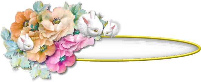 Boutons contenu fleuris /Anémones lapinou