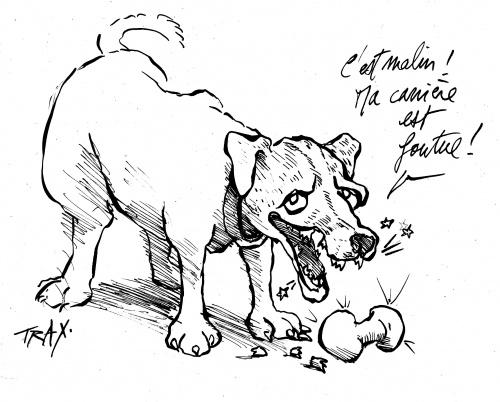 Uggie chien The Artist prix d'interprétation canine collier d' or