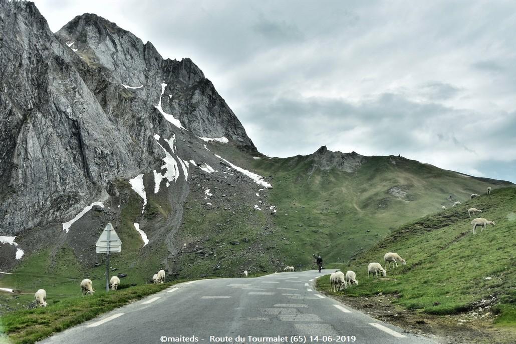 Sur la route du Tourmalet (65)