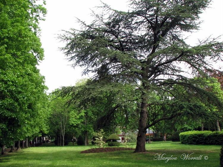 Ribeauvillé : Balade au parc