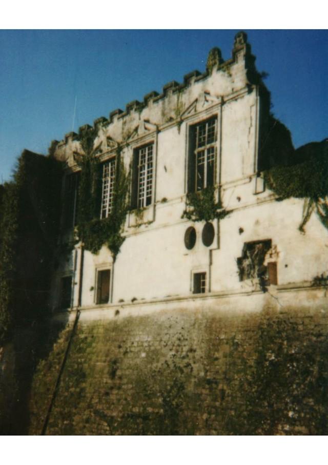 Blog de sylviebernard-art-bouteville : sylviebernard-art-bouteville, Rénovation des façades de la grande salle et des fenêtres à meneaux - Château de Bouteville (2006).