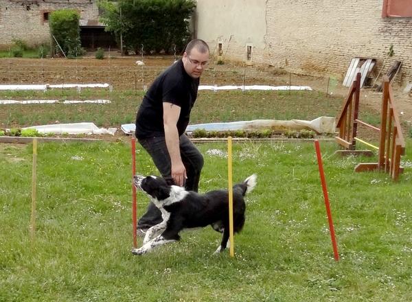 L'Association Zen et Zoo était présente jeudi 8 mai, au magasin Gamm'Vert de Châtillon sur Seine...
