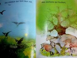 Mon livre des saisons!