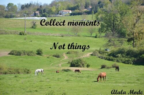 Collect moments not things #14