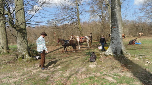 RANDO INTER ASSOCIATIONS Dimanche 12 avril 2015 - Les photos