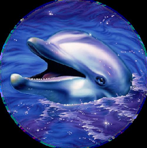tubes dauphins