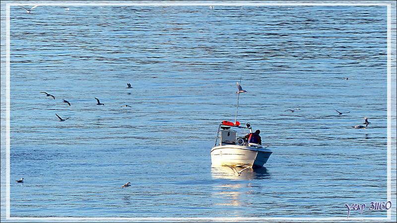 Pêcheur : le signe qu'Ilulissat est tout proche - Groenland