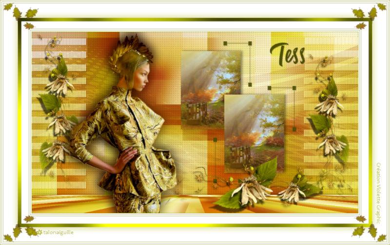 *** 12.Tess ***