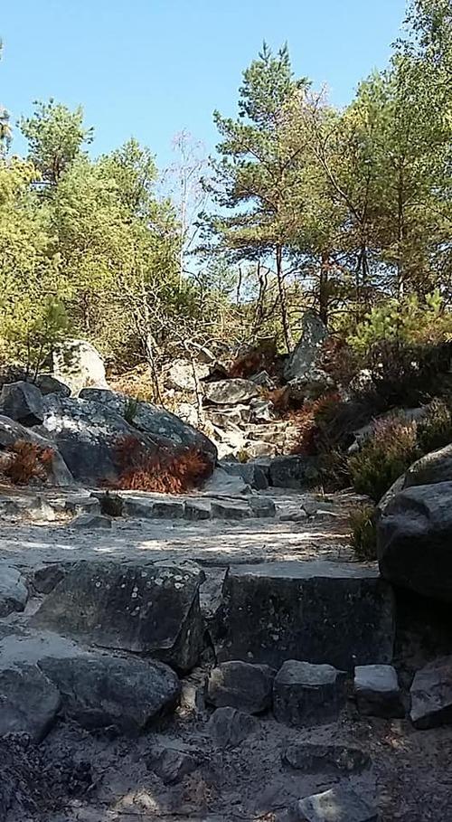 suite gorges de franchard - le sentier des gorges