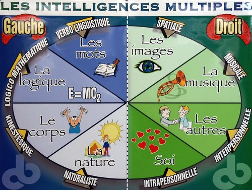 Les intelligences multiples selon Howard Gardner