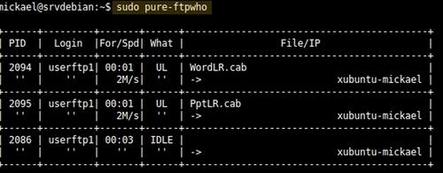 Mise en place d'un serveur FTP avec Pure-FTPd