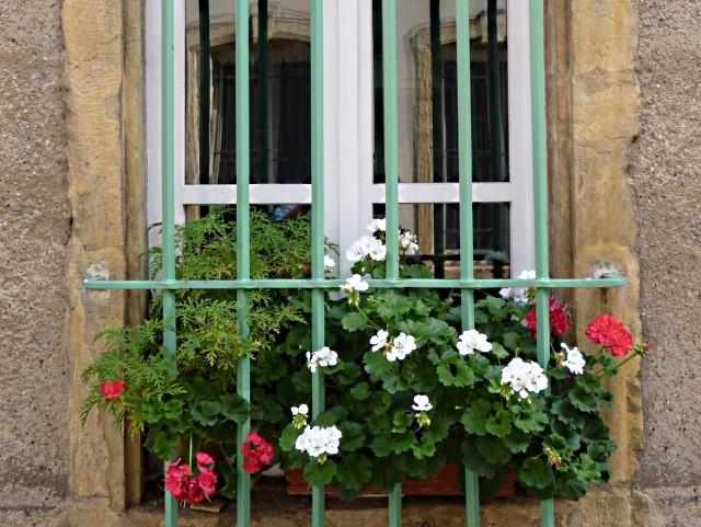 Metz Moselle 5 15 03 2010