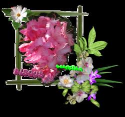 ♥ Jardins Fabuleux  ♥
