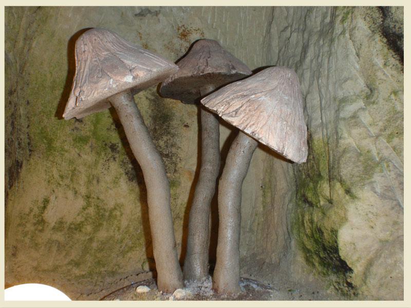 49400 Saumur musée du champignons