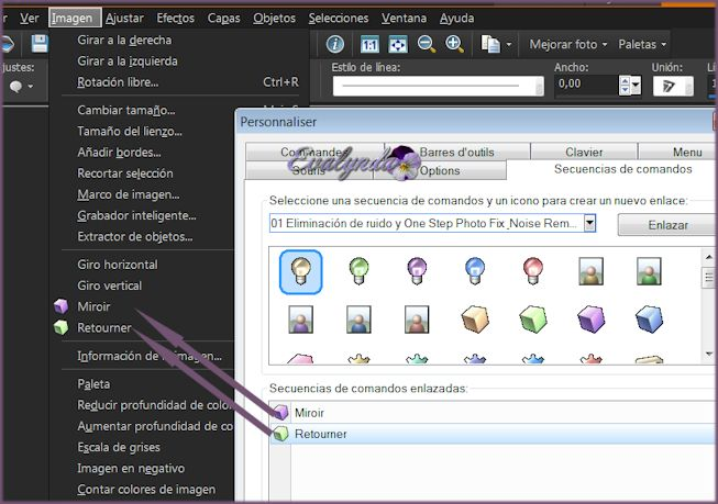 Cómo instalar Espejo, Voltear y gradientes en PSPX5 y siguientes