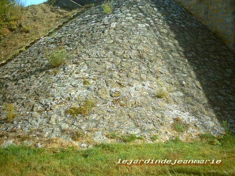 Preignac (en Gironde)Né dans une lagune de Lubbon (Landes) à 149 mètres d'altitude, le Ciron, après avoir traversé trois départements (qui sont de l'amont vers l'aval les Landes, le Lot et Garon