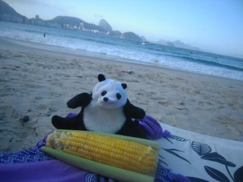 un panda à Rio 028