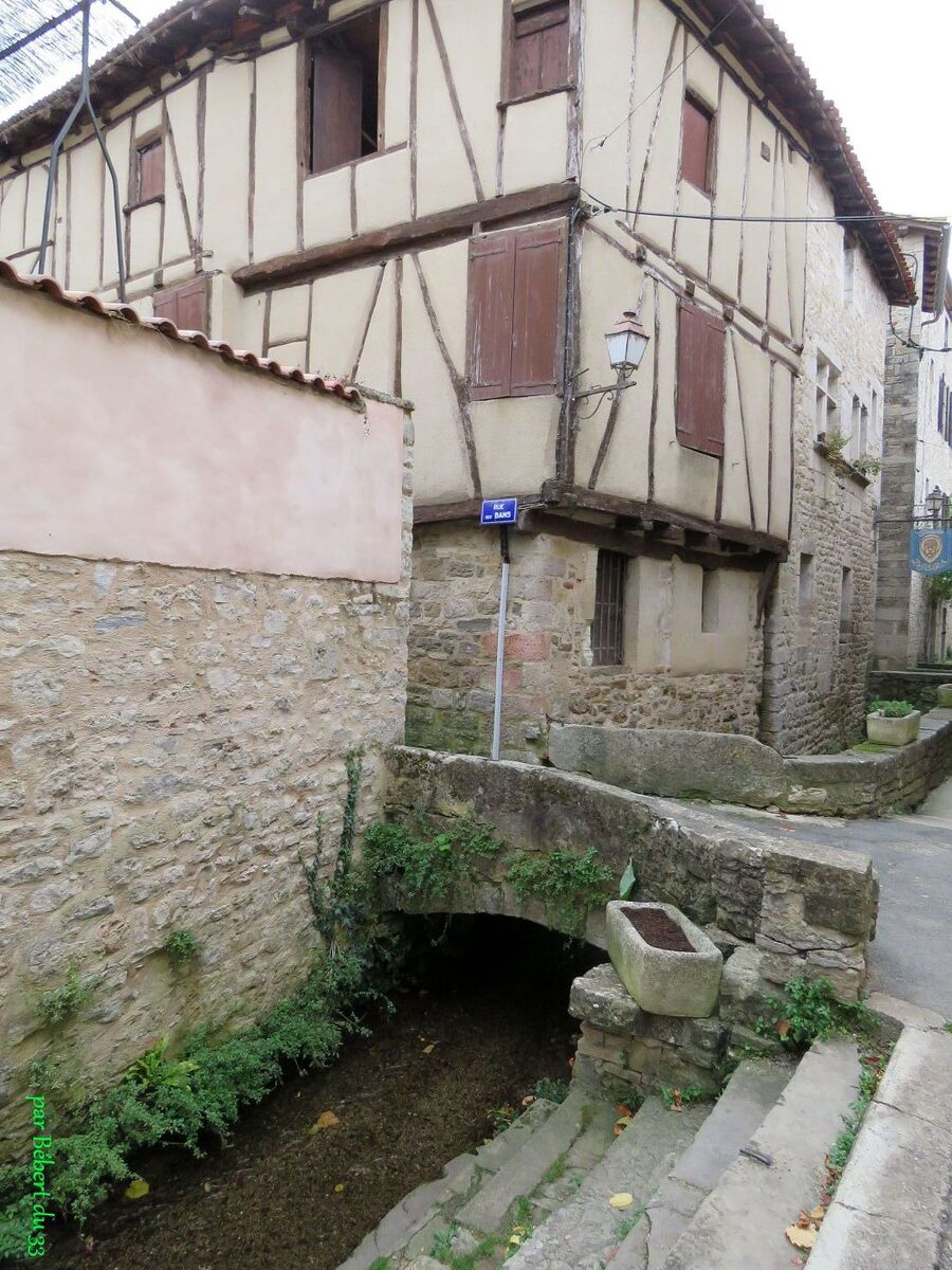St Antonin Noble Val (82)
