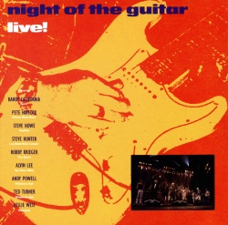 VARIOUS ARTISTS - Night Of The Guitar