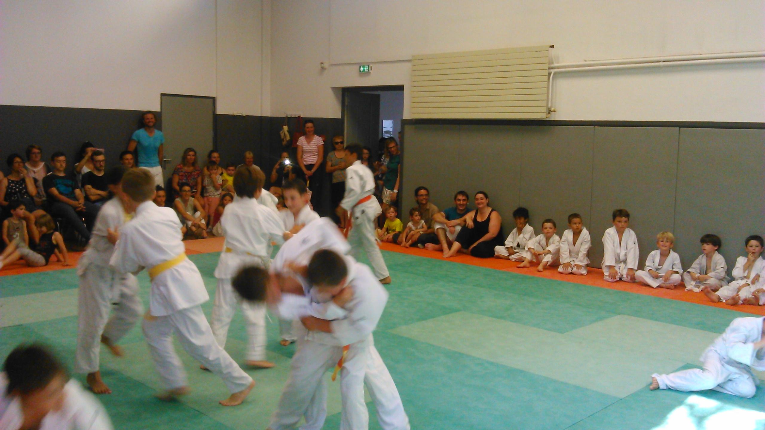 2017 Judo Alf