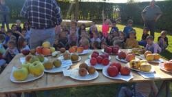 """Animation """"Jus de pommes"""" à l'école de La Neuville"""