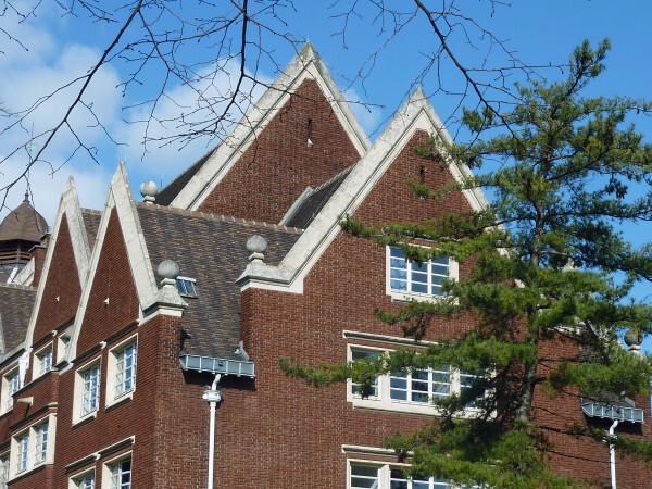 Collège franco britannique - toits