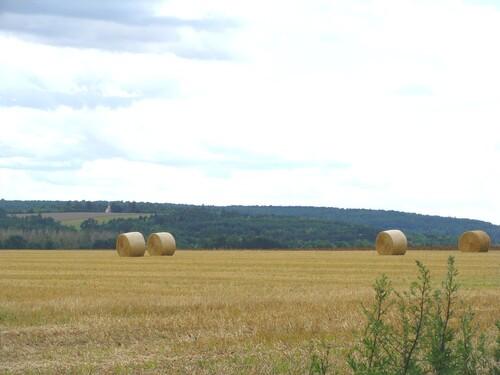 Le Châtillonnais en été...