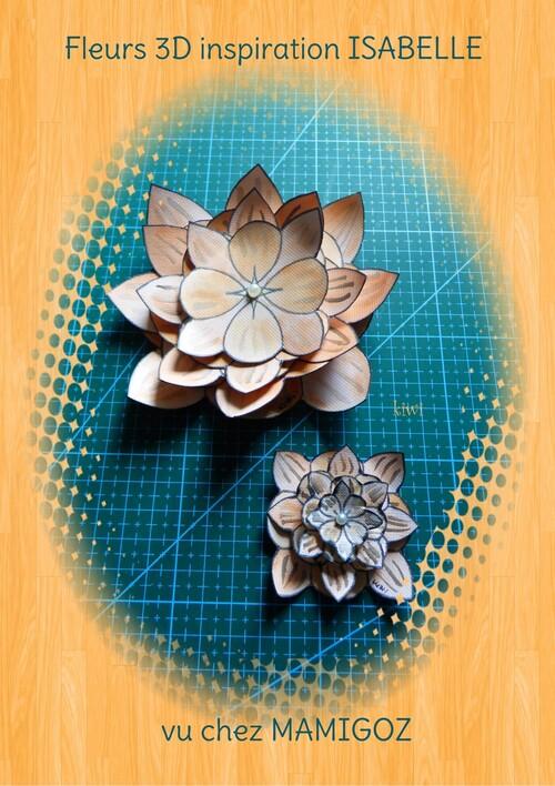 Fleurs 3D