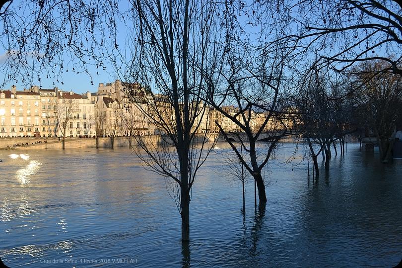 Crue de la Seine 2018 - Photos du 4 février 2018 ... Suite