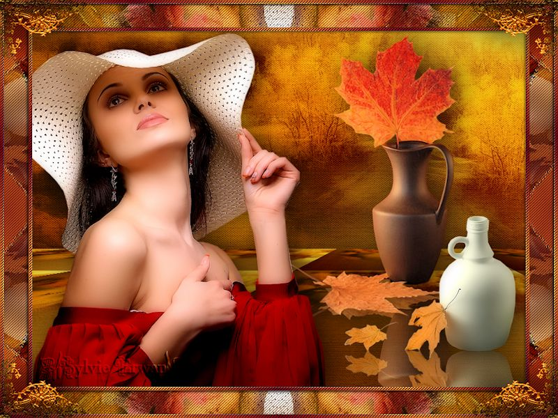 Cadres automne 52