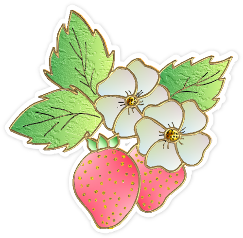fraises /  strawberries