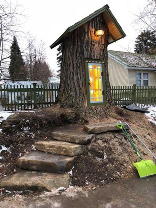 Seconde vie pour un arbre mort