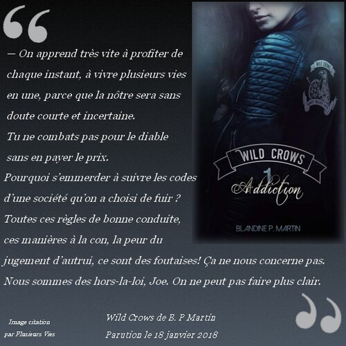 Citation Wild Crows de Blandine P. Martin