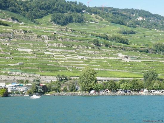 suisse été 2011_journée cgn_sur le henri dunant (66)
