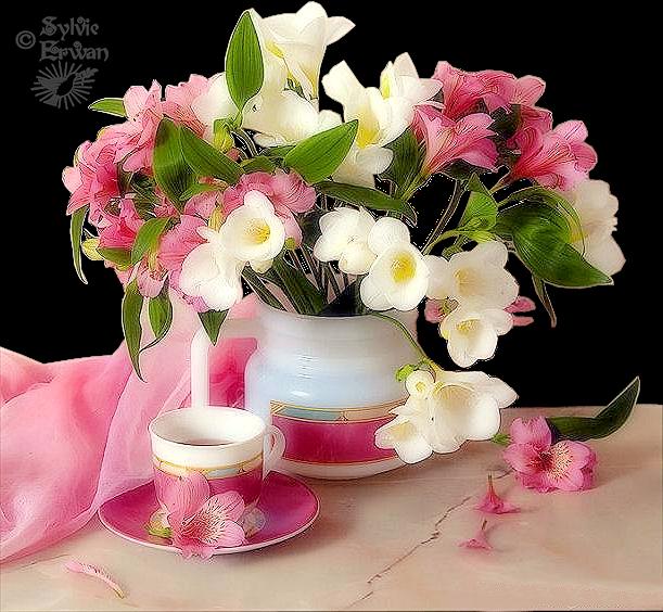 Tubes fleurs création 10