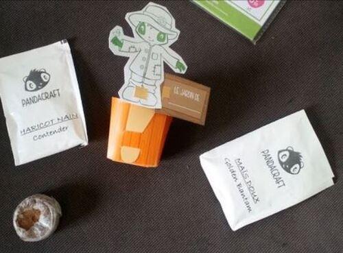 Kit plantes Pandacraft