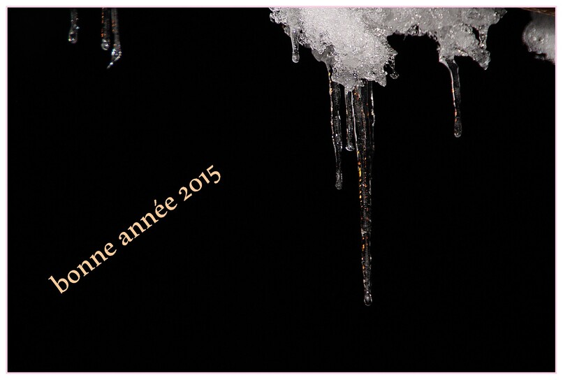 1 JANVIER 2015
