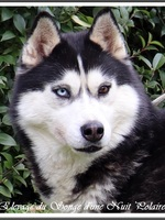 Ourika (3 ans)
