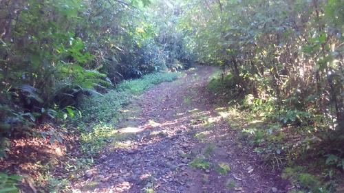 Le Sentier de la Découverte (RANDONNÉE)