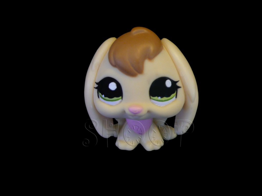 LPS 1167