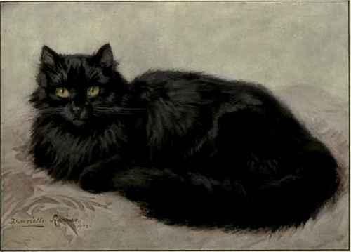 Tableau du samedi 13 : Chat noir