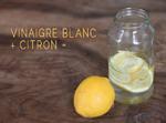 citron macérant dans le vinaigre, crédit photo savethegreen.fr