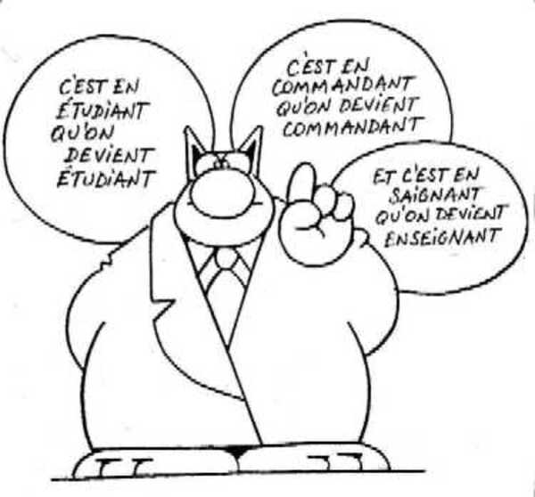 R flexion du chat philippe geluck les bons points de for Divan de coin