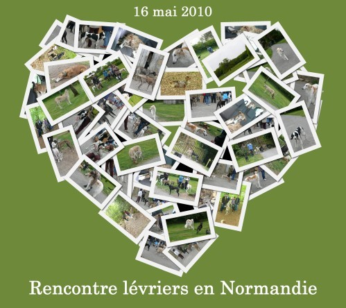 collage-16-mai-2010-chez-rised-copie-1.jpg