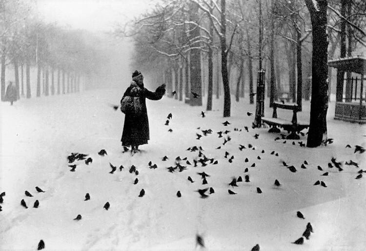 Le jardin du Luxembourg le 24 février 1916