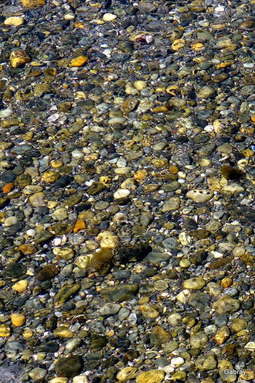 Le Barcarès: bord de l'étang …