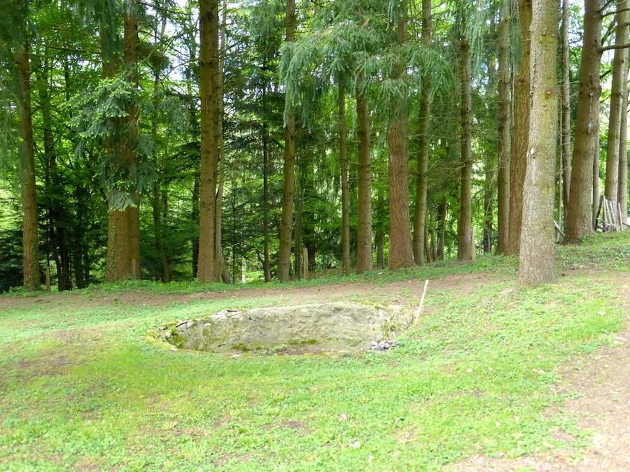 Suite dans le parc du château puis le bourg.