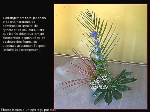 ikebana pps (3)