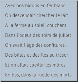 extrait chanson de H F Thiéfaine .