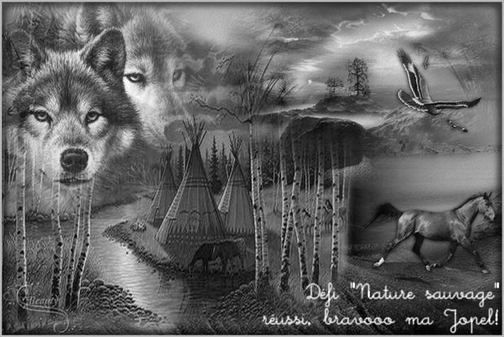 Défi45:Nature sauvage.Merci  ma Sellynoue pour ta 2nde création!!..Récompenses en ligneBravoooo***